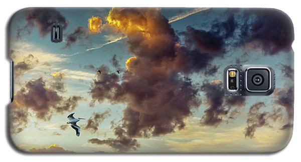 Birds In Flight At Sunset Galaxy S5 Case