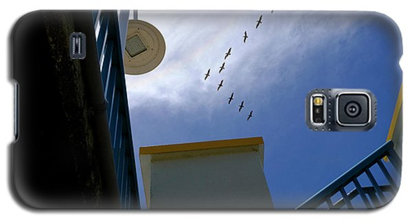 Birds In Formation Over The Boardwalk At Daytona Beach Florida Galaxy S5 Case