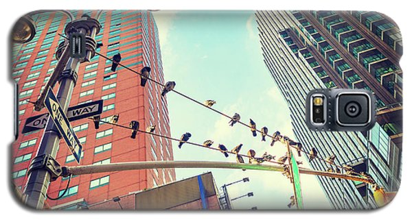 Birds In New York City Galaxy S5 Case