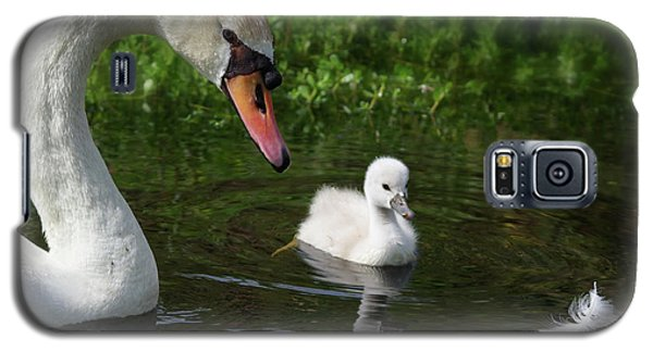 Galaxy S5 Case featuring the photograph Birds Of Feather... by Evelyn Garcia