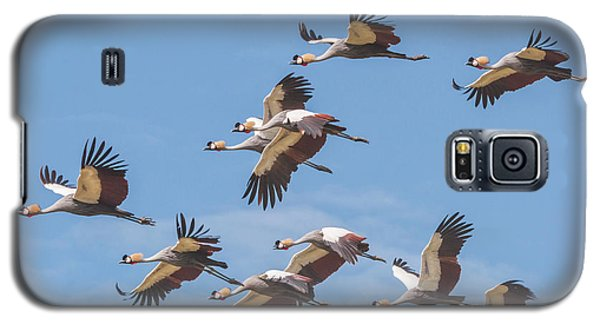 Birds Of The Same Feather. Galaxy S5 Case