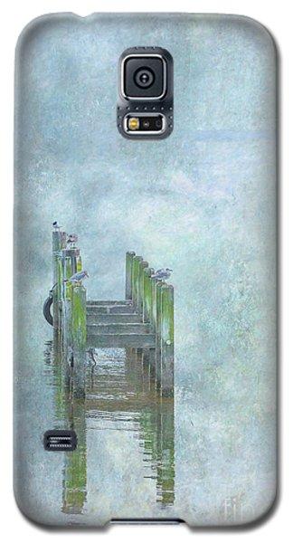 Galaxy S5 Case featuring the digital art Birds On Abandoned Dock by Randy Steele