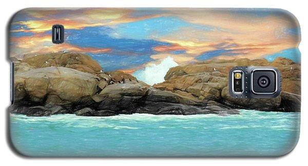 Birds On Ocean Rocks Galaxy S5 Case