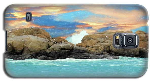 Birds On Ocean Rocks Galaxy S5 Case