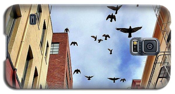 Birds Overhead Galaxy S5 Case