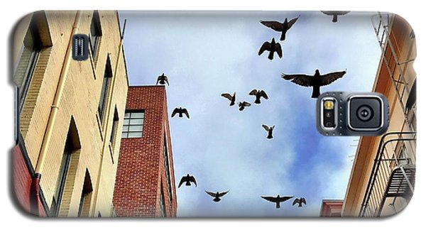 Galaxy S5 Case - Birds Overhead by Julie Gebhardt