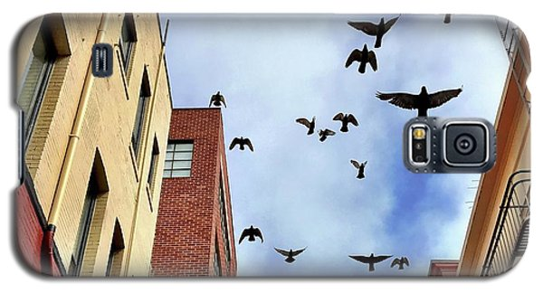 Galaxy S5 Case - Birds Overhead by Julie Gebhardt