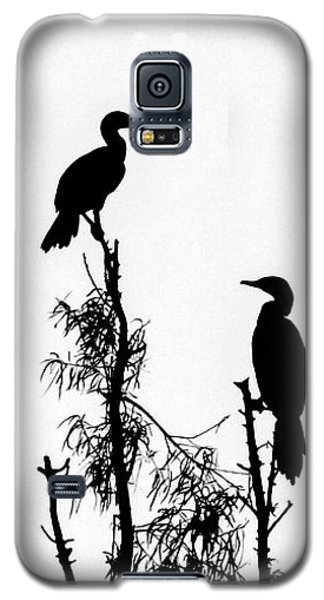 Birds Perched On Branches Galaxy S5 Case