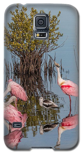 Birds, Reflections, And Mangrove Bush Galaxy S5 Case by Dorothy Cunningham
