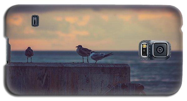 Birds Galaxy S5 Case by Scott Meyer