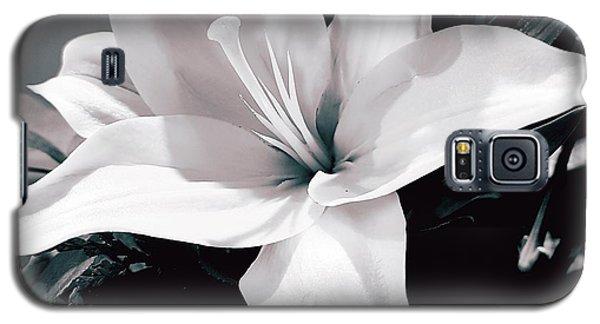 Birthday Lily Galaxy S5 Case