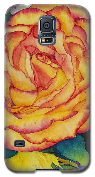 Birthday Rose Galaxy S5 Case by Judy Mercer