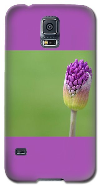 Galaxy S5 Case featuring the photograph Birthing Springtime by Linda Mishler
