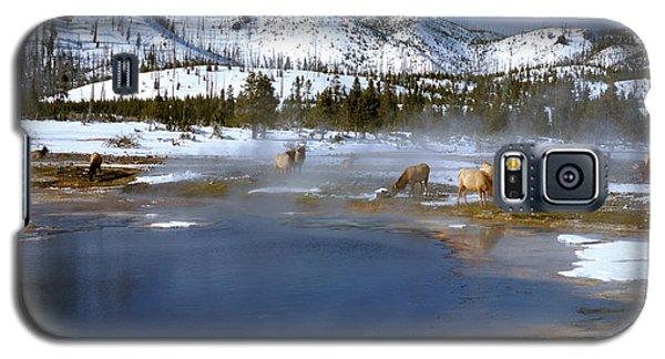 Biscuit Basin Elk Herd Galaxy S5 Case