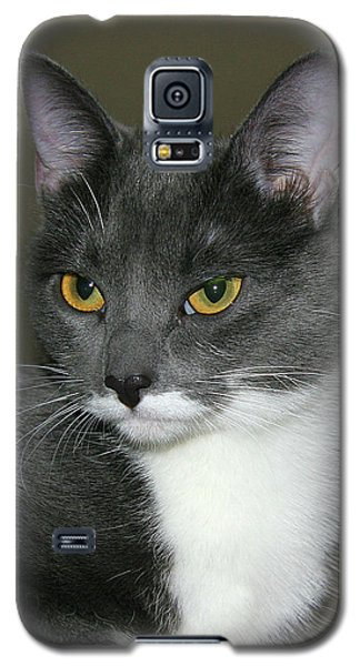 Galaxy S5 Case featuring the photograph Biscuit by Doris Potter
