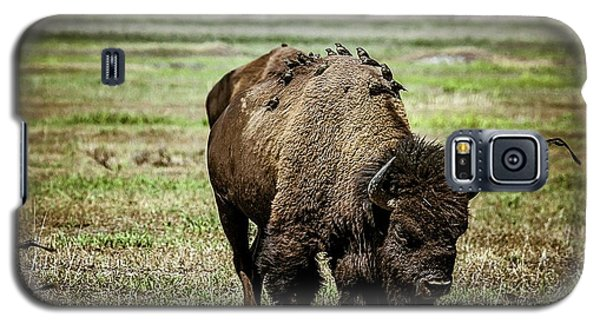 Galaxy S5 Case featuring the photograph Bison Bird Bus by Mary Hone