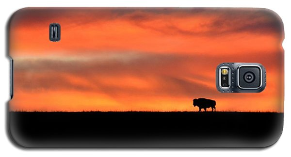 Bison In The Morning Light Galaxy S5 Case by Keith Stokes