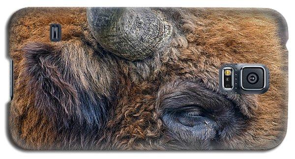 Bison Galaxy S5 Case