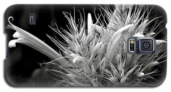 Bizarre Flower Charm Galaxy S5 Case