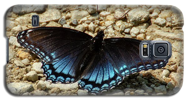 Black And Blue Monarch Butterfly Galaxy S5 Case