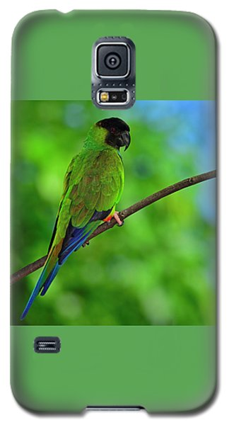Galaxy S5 Case featuring the photograph Black And Blue by Tony Beck