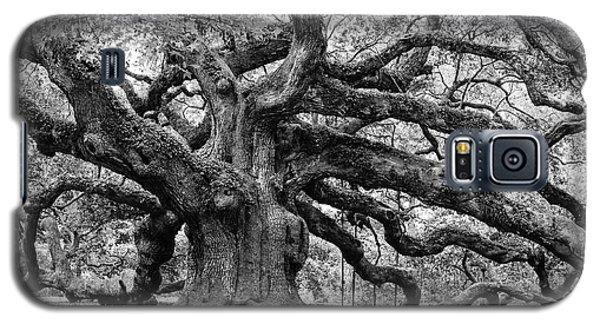 Black And White Angel Oak Tree Galaxy S5 Case