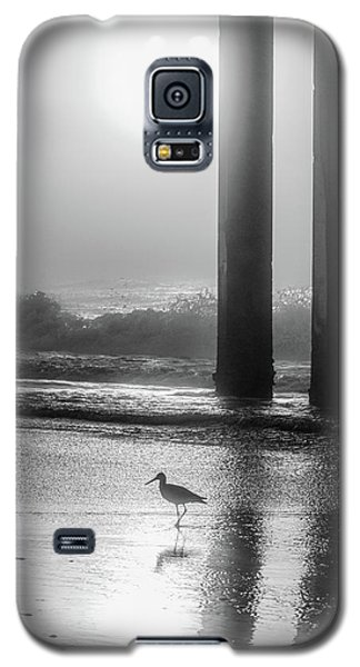 Galaxy S5 Case featuring the photograph Black And White Bird Beach by John McGraw