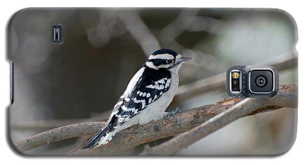Black And White Bird Galaxy S5 Case
