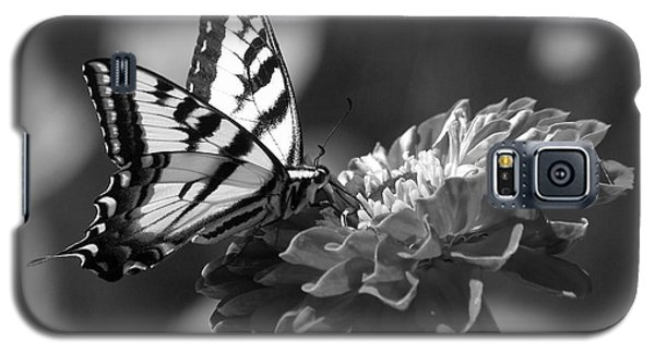 Black And White Butterfly On Zinnia Galaxy S5 Case