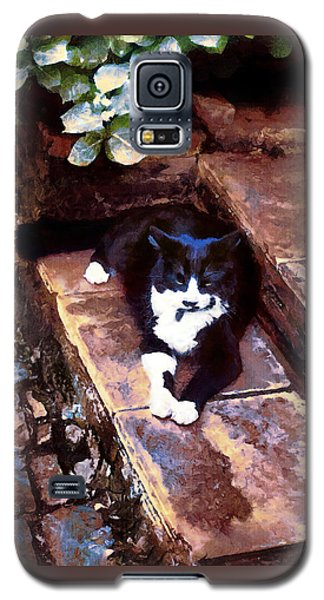 Black And White Cat Resting Regally Galaxy S5 Case