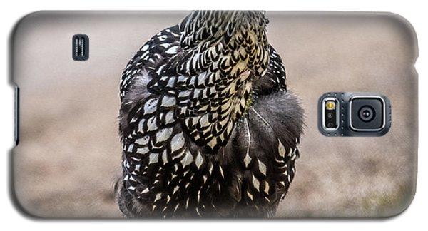 Black And White Chicken Galaxy S5 Case