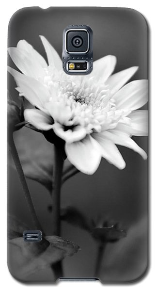 Galaxy S5 Case featuring the photograph Black And White Coreopsis Flower by Christina Rollo