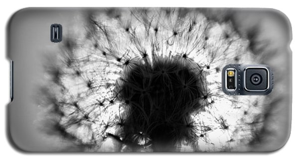 Black And White Flower Ten Galaxy S5 Case by Kevin Blackburn