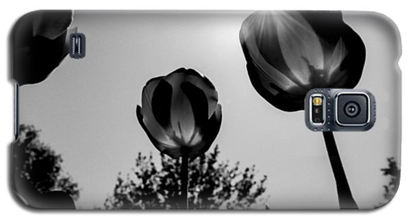 Black And White Flower Thirty One Galaxy S5 Case by Kevin Blackburn