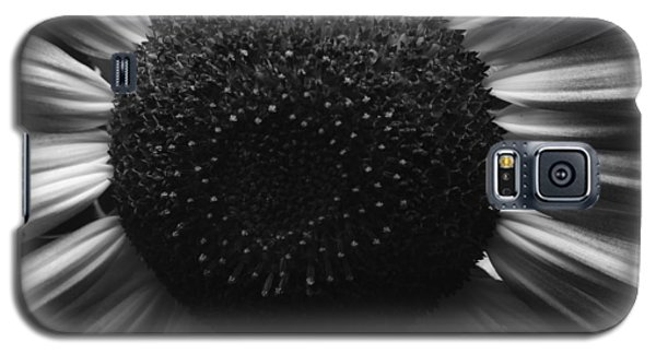 Black And White Flower Twelve Galaxy S5 Case by Kevin Blackburn