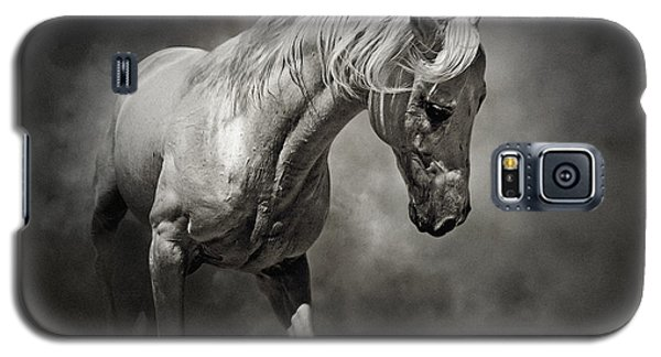 Black And White Horse - Equestrian Art Poster Galaxy S5 Case