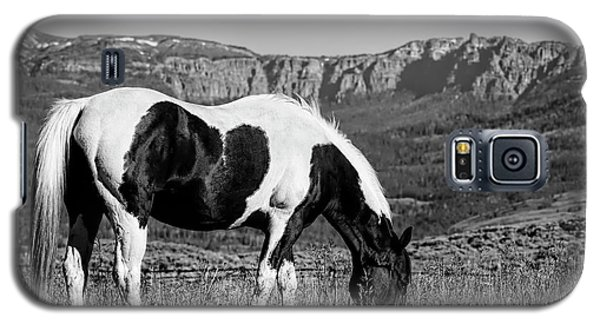 Black And White Horse Grazing In Wyoming In Black And White  Galaxy S5 Case