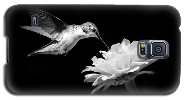 Galaxy S5 Case featuring the photograph Black And White Hummingbird And Flower by Christina Rollo