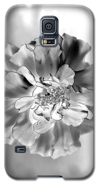 Black And White Marigold Galaxy S5 Case by Christine Ricker Brandt