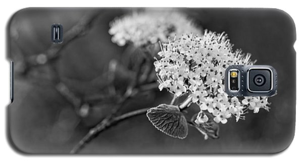 Black And White Galaxy S5 Case