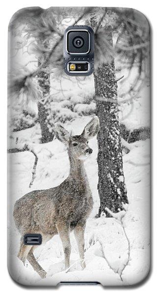 Black And White Mule Deer In Heavy Snowfall Galaxy S5 Case