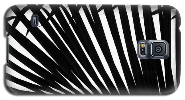 Black And White Palm Branch Galaxy S5 Case