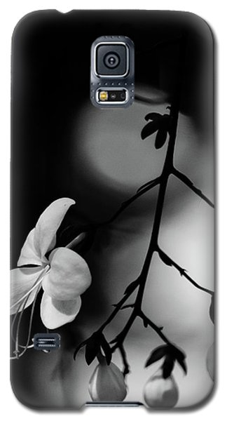 Black And White Pearls Galaxy S5 Case