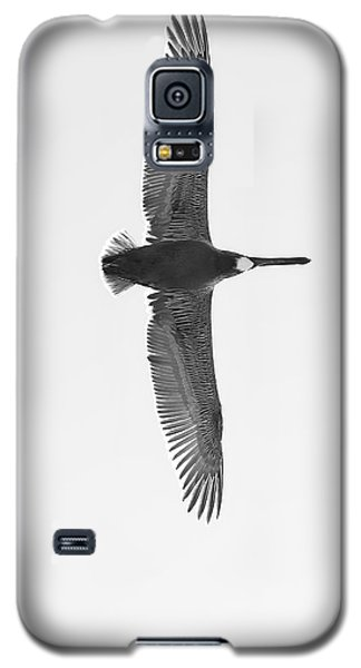 Black And White Pelican Galaxy S5 Case