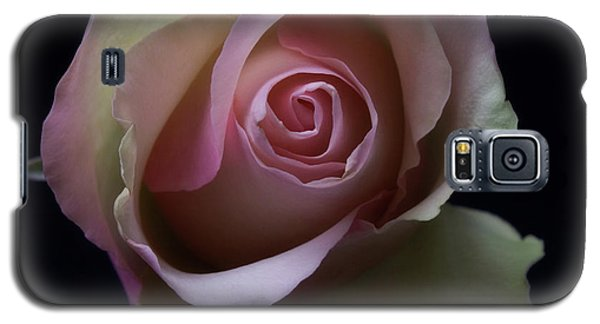 Galaxy S5 Case featuring the photograph Black And White Pink Flowers Roses Macro Photography Art Work by Artecco Fine Art Photography
