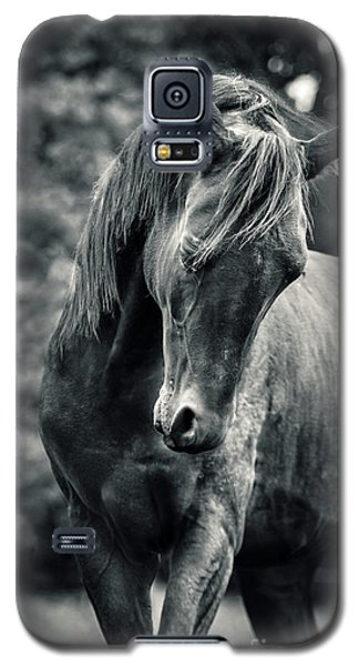 Black And White Portrait Of Horse Galaxy S5 Case