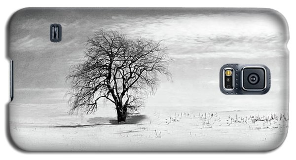 Black And White Tree In Winter Galaxy S5 Case by Brooke T Ryan
