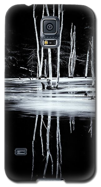 Black And White Winter Thaw Relections Galaxy S5 Case