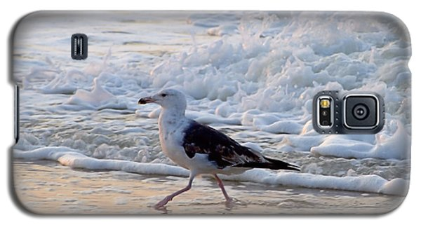 Galaxy S5 Case featuring the photograph Black-backed Gull by  Newwwman