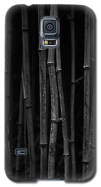 Black Bamboo Galaxy S5 Case